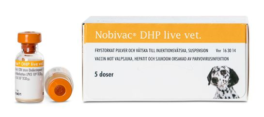 Nobivac DHP live vet. Frystorkat pulver och vätska till injektionsvätska, suspension 5 x 1 dos(er)