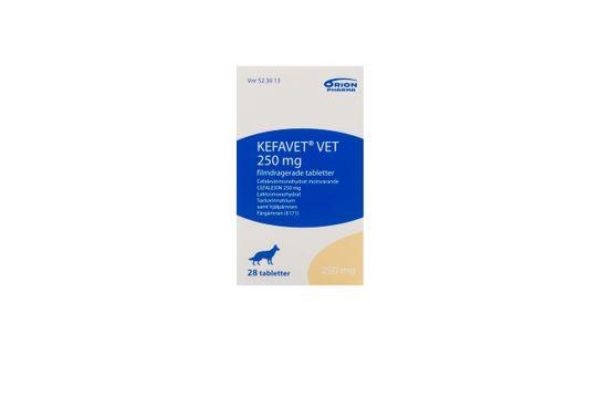 Kefavet vet. Filmdragerad tablett 250 mg 28 styck