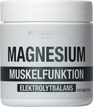 WellAware Magnesium Tablett, 210 st