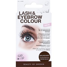 Depend - Lash and eyebrow color BB 1 st